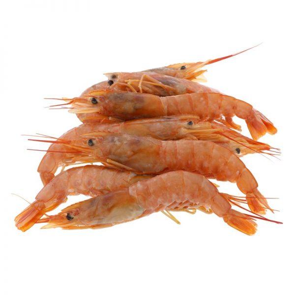 Palamidas Frozen Seafood | ΜΑΛΑΚΟΣΤΡΑΚΑ | ΓΑΡΙΔΕΣ | ΚΑΤΕΨΥΓΜΕΝΟ | ΑΤΛΑΝΤΙΚΟΥ | ΑΤΛΑΝΤΙΚΟΥ
